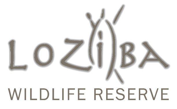 Loziba